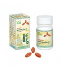 WEN DAN PIAN tablet 60 - 2423704